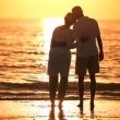 Seniors Romantic Sunset Evening — Stock Video