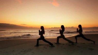 Healthy Lifestyle Yoga Exercises — Stock Video