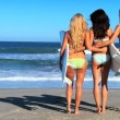 Beach Girls With Surfboards - Stock Photo