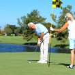 Stock Video: Healthy Seniors Golfing Lifestyle