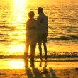 Contented Senior Couple at Sunset — Stock Video
