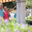 Seniors Leisure Day Out — Vídeo de stock #21874905