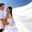 Bride & Groom on the Beach - Stock Photo