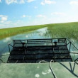 Florida Everglades Ecosystem - Stock Photo