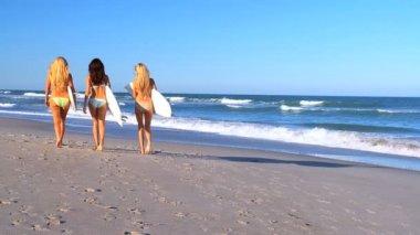 Girlfriends Going Surfing — Stock Video