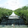 Airboat in Florida Everglades - Foto Stock