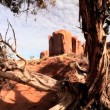 Stock Video: Arid Desert and Foliage, Monument Valley