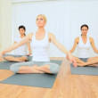 Stock Video: Yoga Group of Multi-Ethnic Females