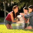 Young Family Bathing Pet Bulldog — Stock Video