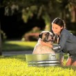 Young Girl Bathing her Pet Bulldog - Stock Photo