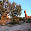 Balanced Rock Formed by Nature — Stock Video #22753031