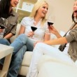Girls Get Together Drinking Wine - Stock Photo