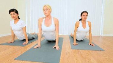 Multi-Ethnic Females at Yoga Class — Stock Video