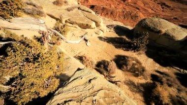 Scenic Beauty of Desert Rocks — Stock Video