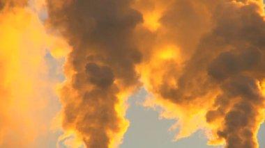 Golden Smoke at Sunrise — Stock Video