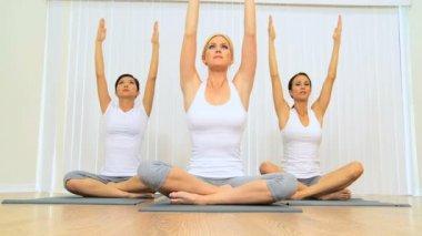 Yoga Class of Multi-Ethnic Females — Stock Video
