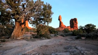 Balanced Rock in National Park — Stock Video