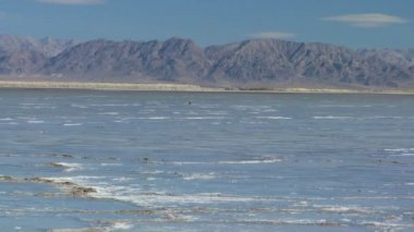 Barren Landscape of Salt Lake Flats — Stock Video
