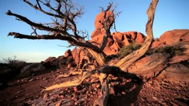 Balanced Rock Formed by Nature — Stock Video