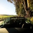 Driving Through the Vineyards of Napa Valley - Stock Photo
