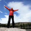 Stock Video: Lone female celebrates her achievement of hiking in national park