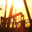 Oil donkeys or pump jacks in perpetual motion at sunset — Vidéo