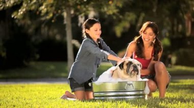 Happy Mother & Daughter Bathing Family Bulldog — Wideo stockowe