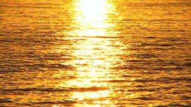 Golden Sunset Over Gentle Ocean — Stock Video
