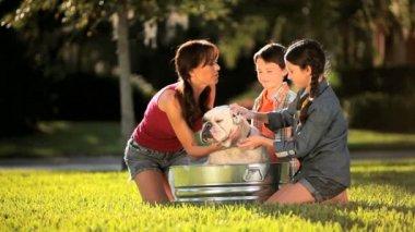 Young Mom & Children Bathing Family Bulldog — Stock Video