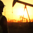 Silhouette of female engineer with clipboard using a cell phone overseeing the site of crude oil production at sunset - Stock Photo