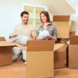 Attractive Couple Surrounded by Moving Boxes — Stock Video #23182436