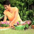 Little African American Girls Gardening with Mom — Stock Video #23246756