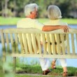 Retired Couple on Park Bench Enjoying the View — Stock Video