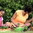 African American Girls & Their Mother Gardening Together — Stock Video #23249764