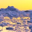 Pan Across Ice Floes & Icebergs — Stock Video