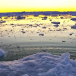 Moving Ice Floes at Sunset — Vídeo de stock