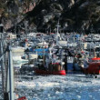 Fishing Harbour in Polar Arctic Region — Stock Video