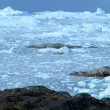 Ice Floes with Icebergs — Stok video