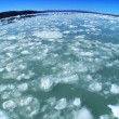 Stock Video: Frozen SeIce in Wide-Angle