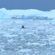 Stock Video: Nautical Vessel Between Ice Floes