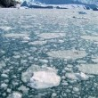 Melted Glacial Ice in Moving Water - Stock Photo