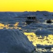 Nautical vessel at sunset in ice floes with icebergs — Stock Video #23258586