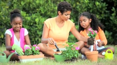 Ethnic Mother & Daughters Gardening Together — Stock Video
