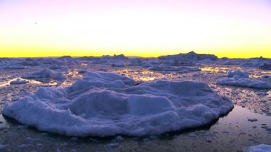 Sunset over Icebergs & Ice Floes — Wideo stockowe