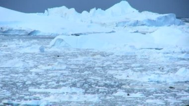 Ice Floes, Disko Bay, Greenland — Stock Video