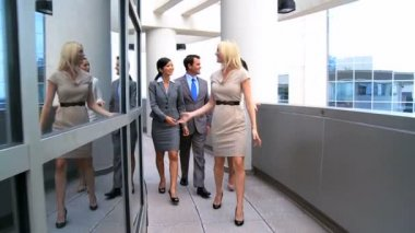 Team Leader & Multi Ethnic Colleagues Going to a Meeting — Stock Video
