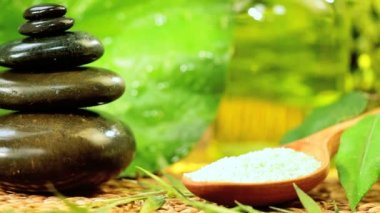 Spa Products of Cleansing Salts & Stones for Wellbeing — Stock Video
