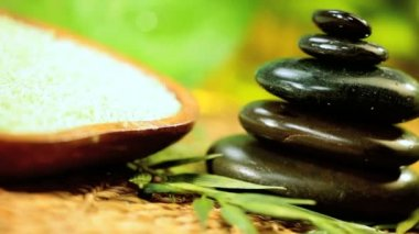 Black Spa Stones, Cleansing Salts & Green Leaves — Stock Video