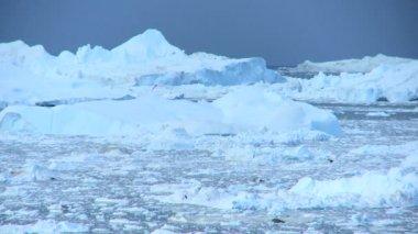 Panning View of Arctic Icebergs — Stock Video