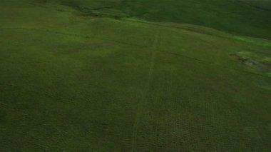 Aerial View of Rich Agricultural Plains, Iceland — Stock Video